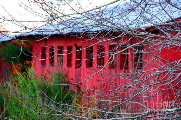 Photograph - Barn Of Red By Diana Sainz by Diana Raquel Sainz