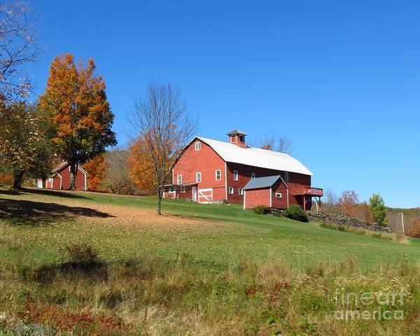 Photograph - Barn On A Hill by Donna Cavanaugh