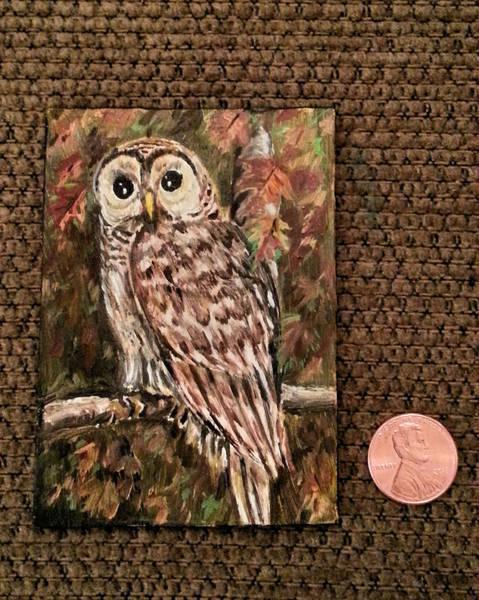Painting - Barn Owl  by Steve Ozment