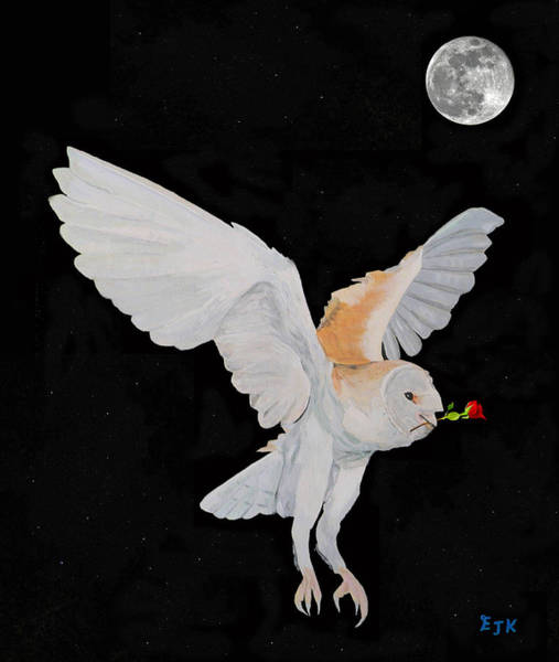 Barn Owl Mixed Media - Barn Owl With Rose by Eric Kempson