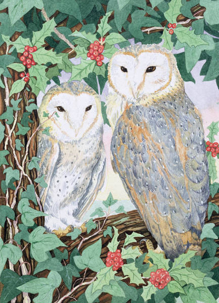 Barn Owl Painting - Barn Owls by Suzanne Bailey