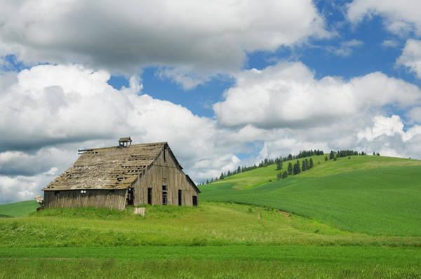 Barn Photograph - Barn Palouse Region Washington by Alan Majchrowicz
