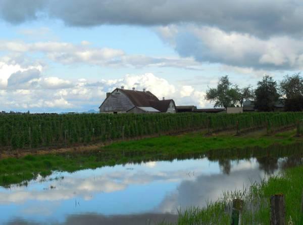 Barn Reflected In Pond  Art Print by Karen Molenaar Terrell