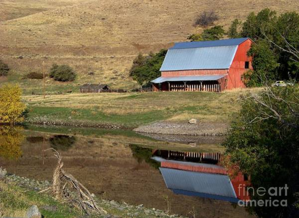 Photograph - Barn Reflection by Charles Robinson