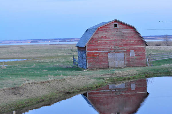 Photograph - Barn Reflection by Roxy Hurtubise