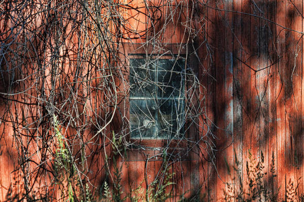 Photograph - Barn Side by David Armstrong