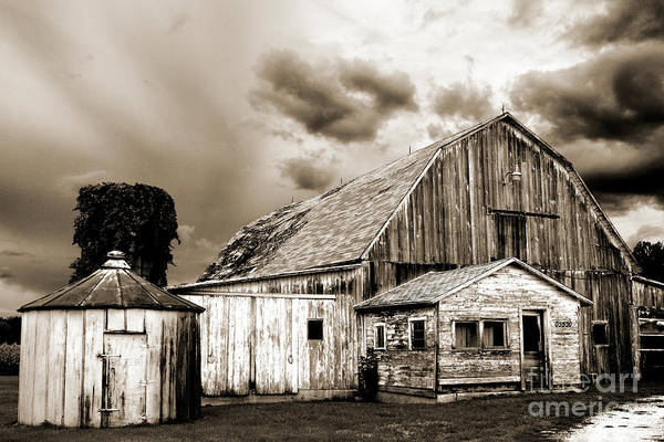 Photograph - Barn Warm Tone by Michael Arend