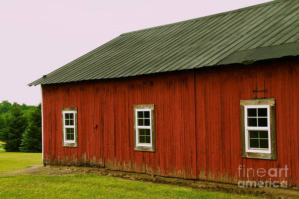 Photograph - Barn by William Norton