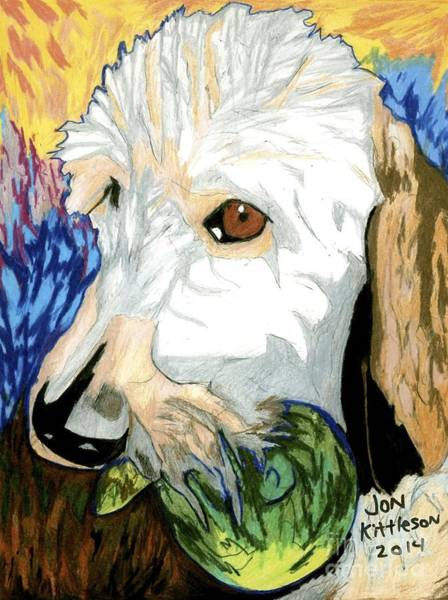 Drawing - Barney by Jon Kittleson