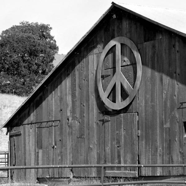 Solvang Photograph - Barns For Peace by Art Block Collections