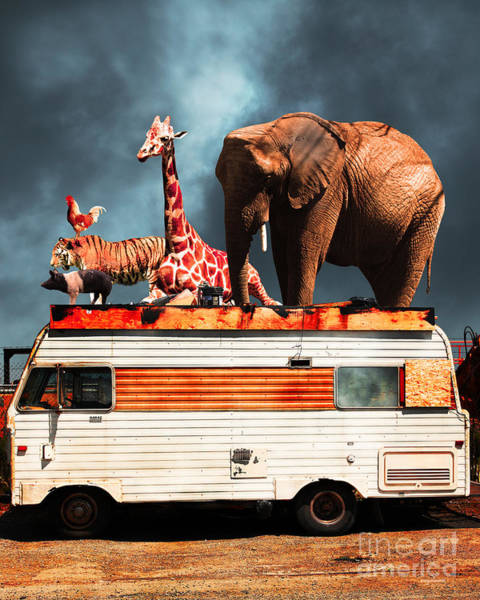 Colorful Giraffe Photograph - Barnum And Bailey Goes On A Road Trip 5d22705 Vertical by Wingsdomain Art and Photography