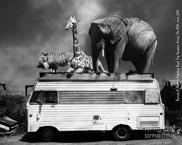 Colorful Giraffe Photograph - Barnum And Baileys Fabulous Road Trip Vacation Across The Usa Circa 2013 22705 Black White With Text by Wingsdomain Art and Photography