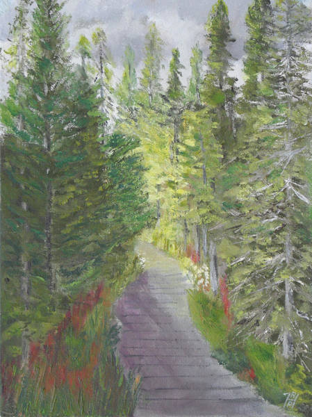 Adirondack Mountains Painting - Barnum Brook Boreal Life Trail by Robert P Hedden