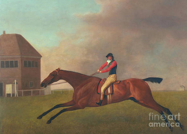 Chestnut Horse Painting - Baronet With Sam Chifney Up by George Stubbs