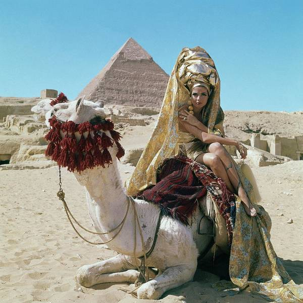 Young Woman Photograph - Baronne Van Zuylen On A Camel by Leombruno-Bodi