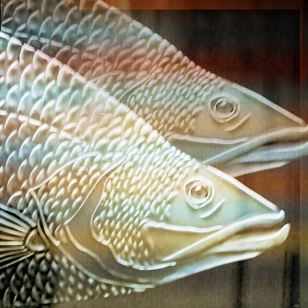 Photograph - Barramundi by Holly Kempe
