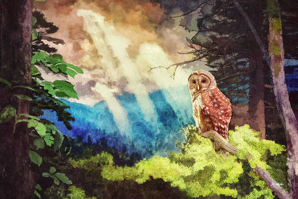 Digital Art - Barred Owl In The Mountains by Steven Llorca