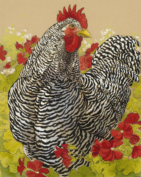 Wall Art - Painting - Barred Rock Rooster In The Geraniums by Tracie Thompson