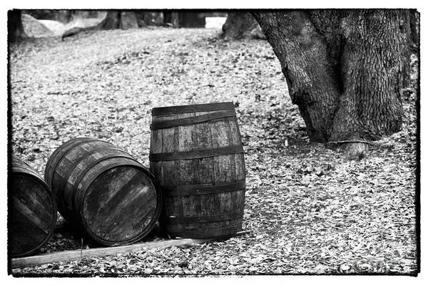 Photograph - Barrels In The Woods by John Rizzuto