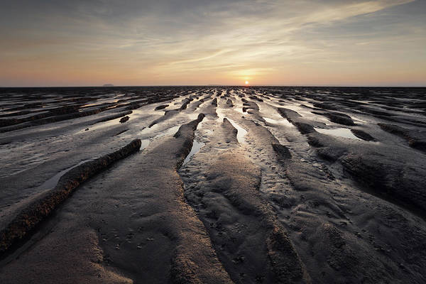 Mare Photograph - Barren Landscape by James Osmond