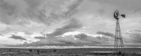 Photograph - Barren by Ryan Heffron