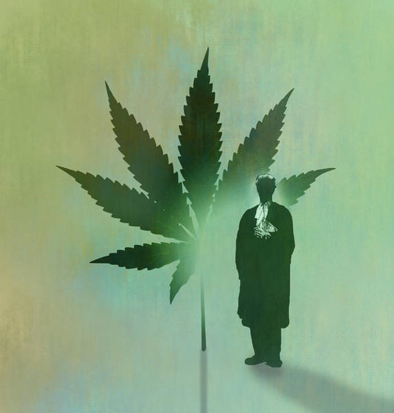 Wall Art - Photograph - Barrister And Cannabis Leaf by Ikon Images