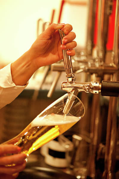 Beer Photograph - Bartender Tapping Beer In Bar by Ralucahphotography.ro