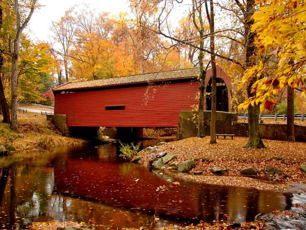 Chester Mixed Media - Bartram's Covered Bridge by L Brown