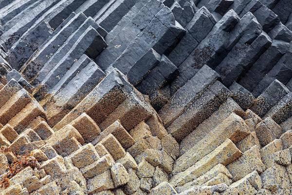 Basalt Columns Photograph - Basalt Columns by Alex Hyde