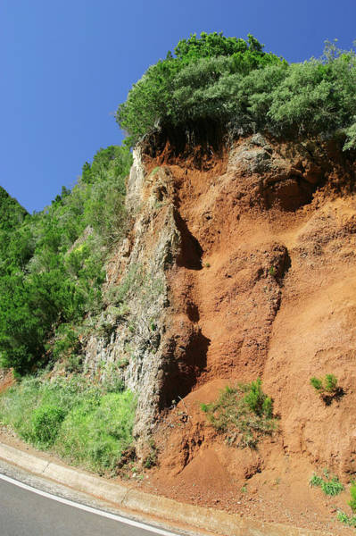 Tuff Wall Art - Photograph - Basalt Dyke In Volcanic Cliff by Michael Szoenyi/science Photo Library