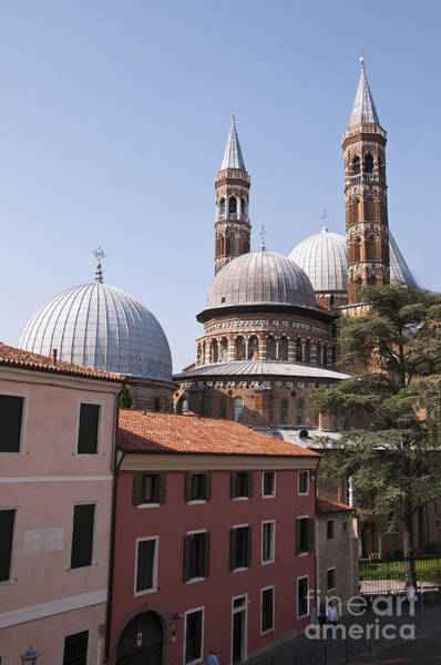 Photograph - Basilica Of St Anthony by Brenda Kean