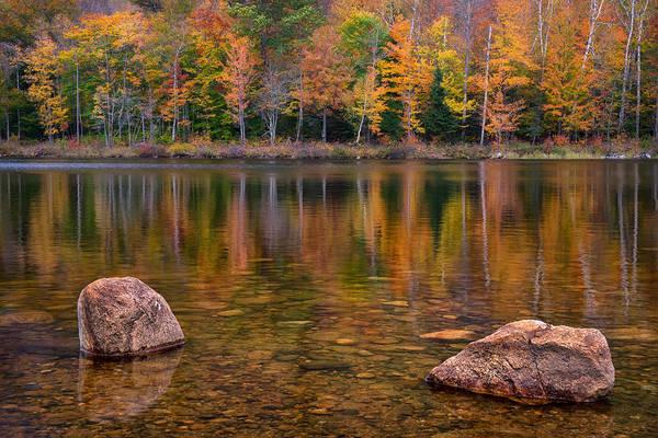 Photograph - Basin Lake by Darylann Leonard Photography