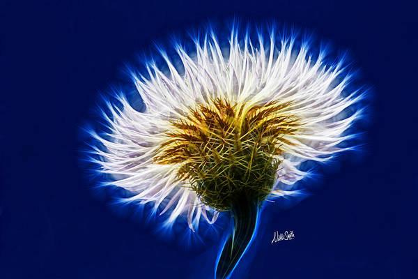 Digital Art - Basket Flower Inner Beauty by Nikki Marie Smith