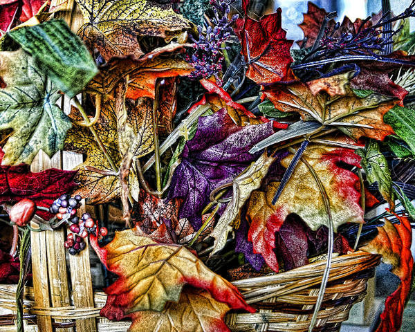 Photograph - Basket Of Colors by Wayne Wood
