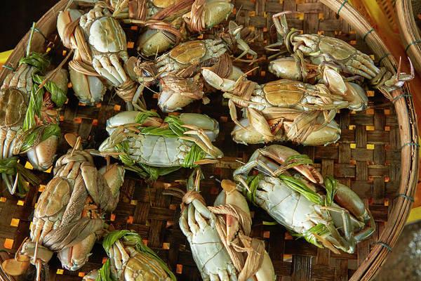 Hoi An Photograph - Basket Of Crabs, Fish Market, Hoi An by David Wall