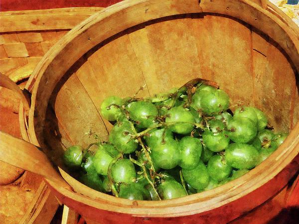 Photograph - Basket Of Green Grapes by Susan Savad