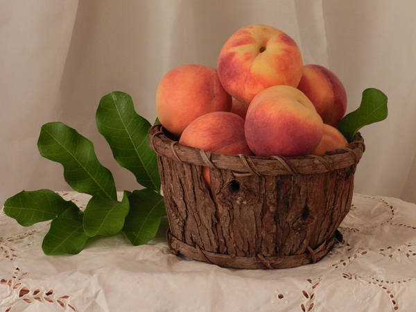 Photograph - Basket Of Peaches by Grace Dillon