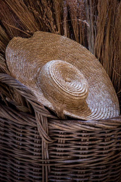 Photograph - Basket Of Straw by James Woody