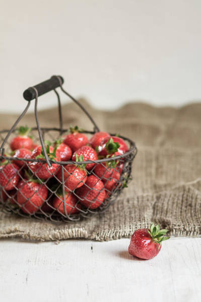 Handle Photograph - Basket Of Strawberries On Rug by Westend61