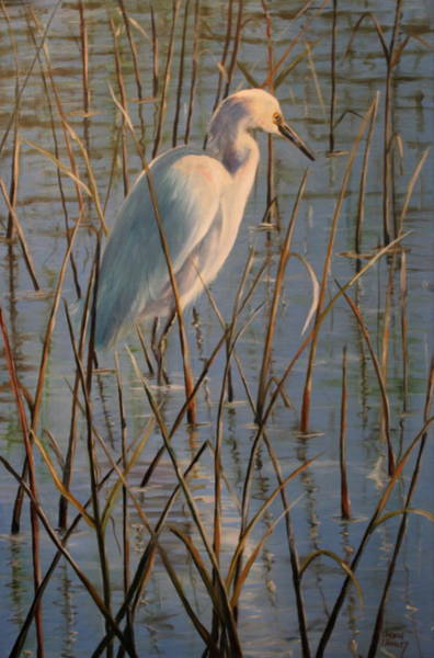 Wall Art - Painting - Basking Egret by Karen Langley