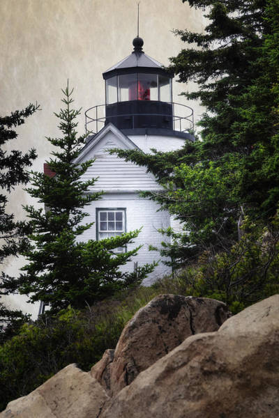 Photograph - Bass Harbor Head Light by Joan Carroll