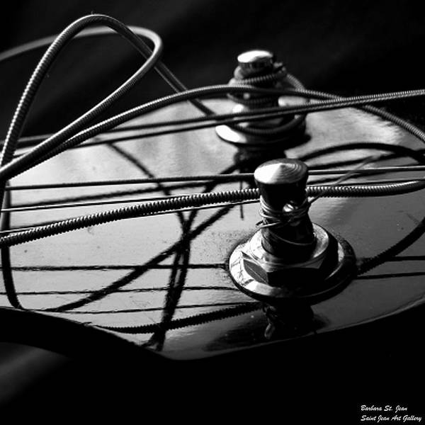 Photograph - Bass String Blues by Barbara St Jean