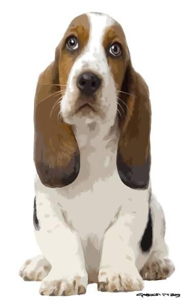 Digital Art - Basset Hound Puppy by Gabriel T Toro