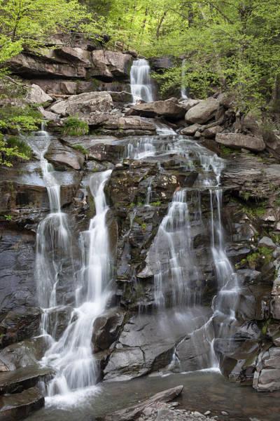 Photograph - Bastion Falls Overview by Denise Bush