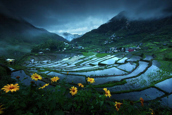 Terrace Photograph - Batad Rice Terraces by Geb Bunado