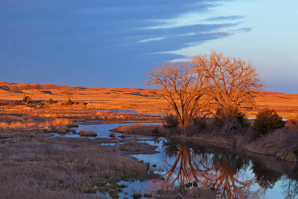Nebraska Photograph - Bathed In Sunset Light The Calamus by Chuck Haney