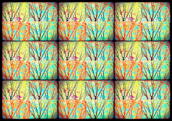 Photograph - Batik Trees Collage Abstract by Denise Beverly