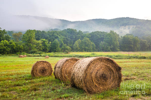 Photograph - Battenkill Farm Hay Bales by Susan Cole Kelly