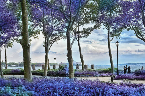 Photograph - Battery Park In The Spring by Evie Carrier