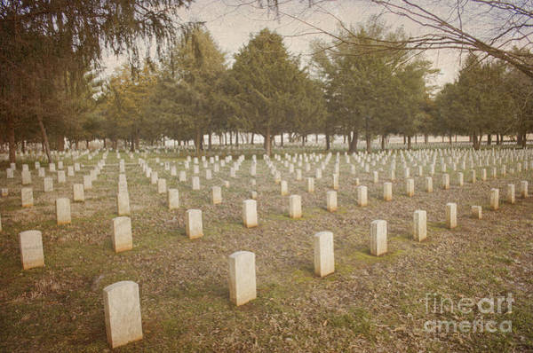 Photograph - Battle Of Stones River Union Army Graveyard II by Donna Greene